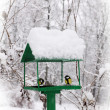 Bird feeders — Stock Photo
