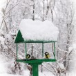 Bird feeders — Foto Stock