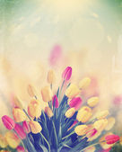 Bouquet of tulips,vintage — Stock Photo