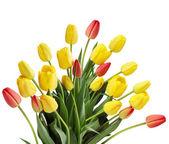 Large bouquet — Stock Photo
