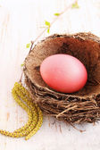 Red egg in a nest — Stock Photo