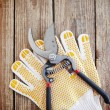 Gardening gloves and secateurs - Stock Photo