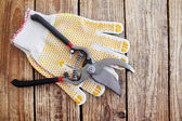 Gloves and secateurs — Stock Photo