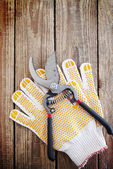 Gardening gloves and secateurs — Stock Photo