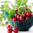 Foto Stock: Ripe juicy cherries