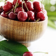 Cherry harvest — Stock Photo
