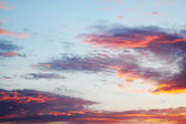Sunset in pink and lilac tones — Stock Photo