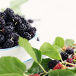 Stock Photo: Mulberries