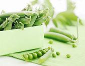 Fresh pods of green peas — Stock Photo