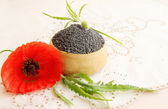 Seeds poppy — Stock Photo