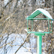 Feeder for birds — Stock Photo