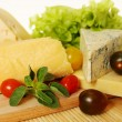 Cheese with oregano  — Stock Photo