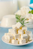 Feta cheese with dill — Stock Photo