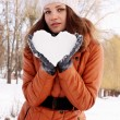 Heart of Snow — Stock Photo