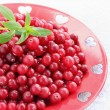 Red cranberries on plate — Stock Photo