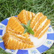 Honey cake on grass — Stock Photo