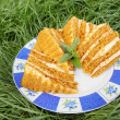 Cake on grass — Stock Photo