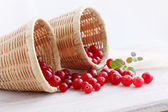 Cranberries in baskets — Stock Photo