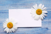 Daisies with card on an blue board — Stok fotoğraf