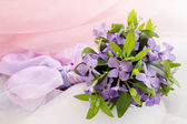 Lilac periwinkle — Stock Photo