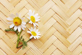 Daisies on a wicker board — Stock Photo