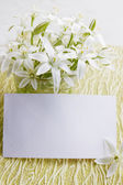 Lilies flowers with a card — Foto de Stock