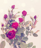 Small vintage roses — Stock Photo