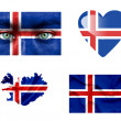 Set of various Iceland flags — Stock Photo #12192170