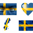 Set of various Sweden flags — Stock Photo