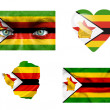 Stock Photo: Set of various Zimbabwe flags