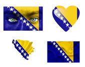 Reeks van verschillende vlaggen van bosnië en herzegovina — Stockfoto