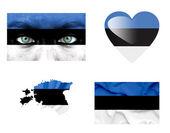 Set di varie bandiere estonia — Foto Stock