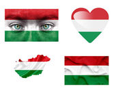Reeks van verschillende hongarije vlaggen — Stockfoto