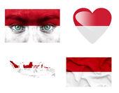 Reeks van verschillende indonesië vlaggen — Stockfoto