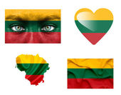 Set of various Lithuania flags — Stock Photo