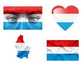 Reeks van verschillende luxemburg vlaggen — Stockfoto