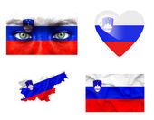 Set of various Slovenia flags — Stock Photo