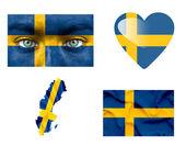 Reeks van verschillende vlaggen van zweden — Stockfoto