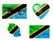 Set of various Tanzania flags — Stock Photo