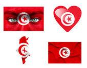 Reeks van verschillende tunesië vlaggen — Stockfoto
