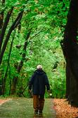 Senior hombre caminando en el bosque — Foto de Stock