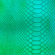 Stock Photo: Crocodile skin pattern