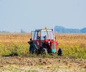 Tractor in field — Stock Photo