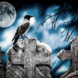 Stock Photo: Crow sitting on gravestone in moonlight at cemetery