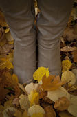 Woman boots standing on autumn leaves - Walk concept — Стоковое фото