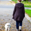 Girl walking dog in park — Stock Photo