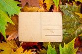 Pusty pocztówka starodawny przeciwko autumn odchodzi — Zdjęcie stockowe