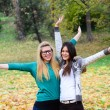 Two happy girl friends in nature — Stock Photo #14804871