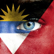 Human face painted with flag of Antigua and Barbuda — Stock Photo