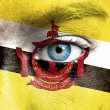 Human face painted with flag of Brunei — Stock Photo